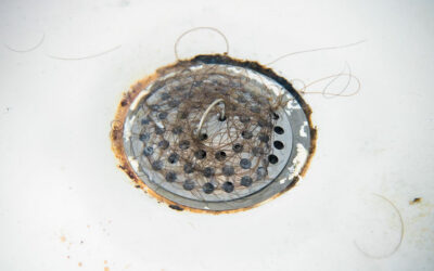Main Causes of Bathroom Drain Clogs